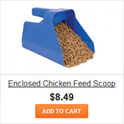Enclosed Chicken Feed Scoop