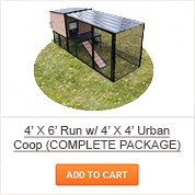 4' X 6' Run with 4' X 4' Urban Coop - COMPLETE Package