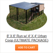 8' X 6' Run with 4' X 4' Urban Coop - ULTIMATE Package