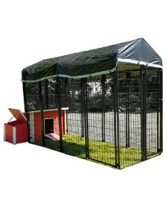 Value Chicken Coop With 4' X 8' Chicken Run  (BASIC)