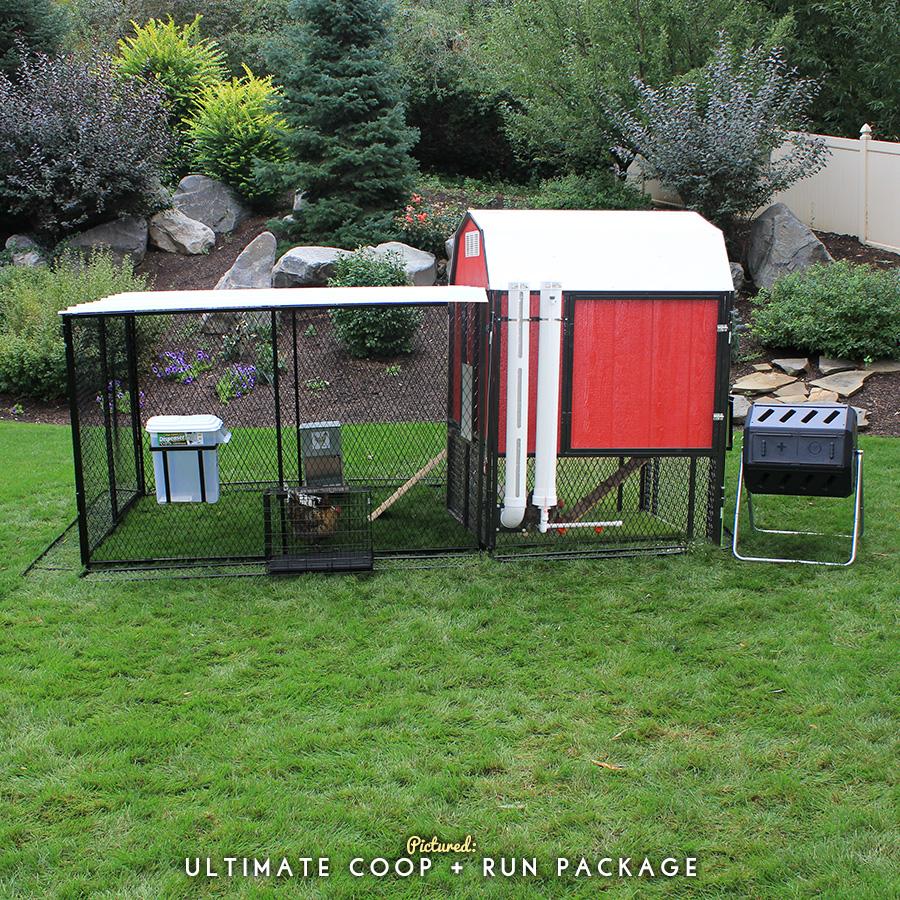 4 u0027 x 12 u0027 chicken run with 4 u0027 x 6 u0027 barn chicken coop from chicken